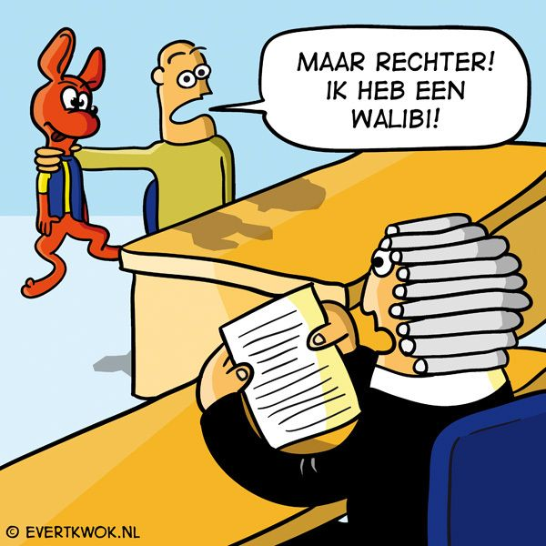 Ik vroeg om een pro deo advocaat. PRO DEO. #cartoon -Evert Kwok