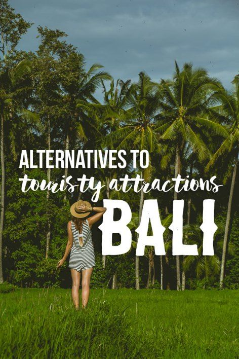 Alternatives to the top Touristy Things to do in Bali! Waterfalls, temples, rice terraces, and more!