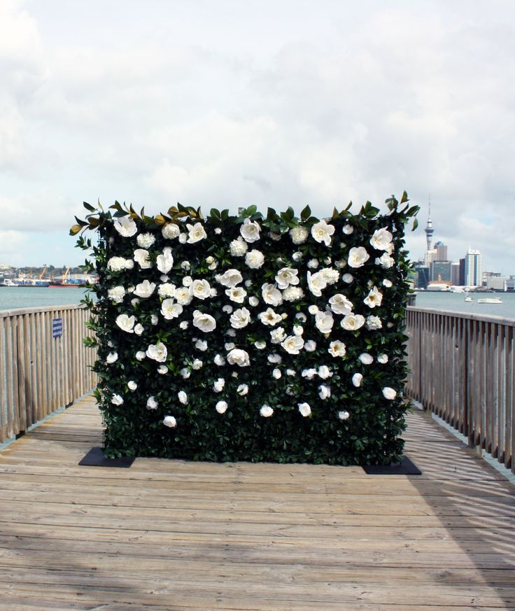 Magnolia flower wall by The Flower Wall NZ