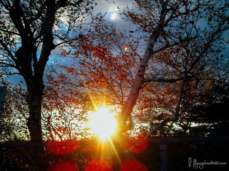 Coucher de soleil au Parc de la Chute Montmorency au Québec