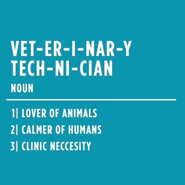 115 best love being a vet tech images on pinterest | veterinary, Human Body