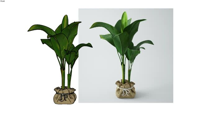 Large preview of 3D Model of PLANT 3