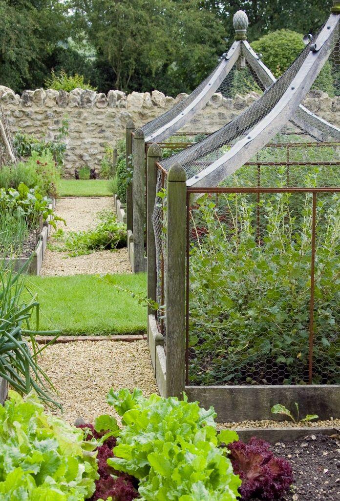 A kitchen garden of raised beds and architectural oak fruit cages by Arne Maynard Garden Design (slide #9)