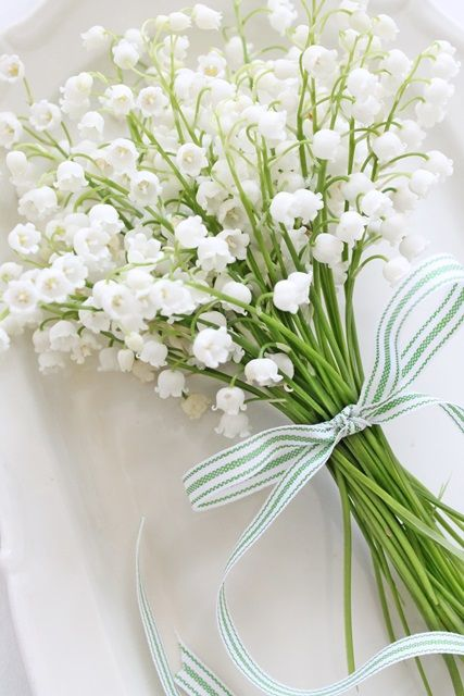 Happy May :-) French tradition of giving Lily of the Valley on the 1st day of May!