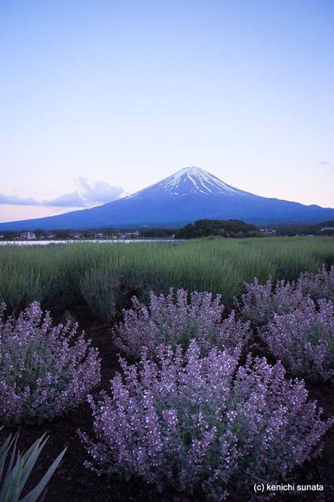 Mt. Fuji, Japan: Photo by Kenichi Sunata