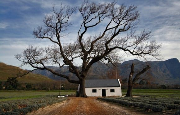 South African Landscapes - David Lazarus / Cape Town Photographer