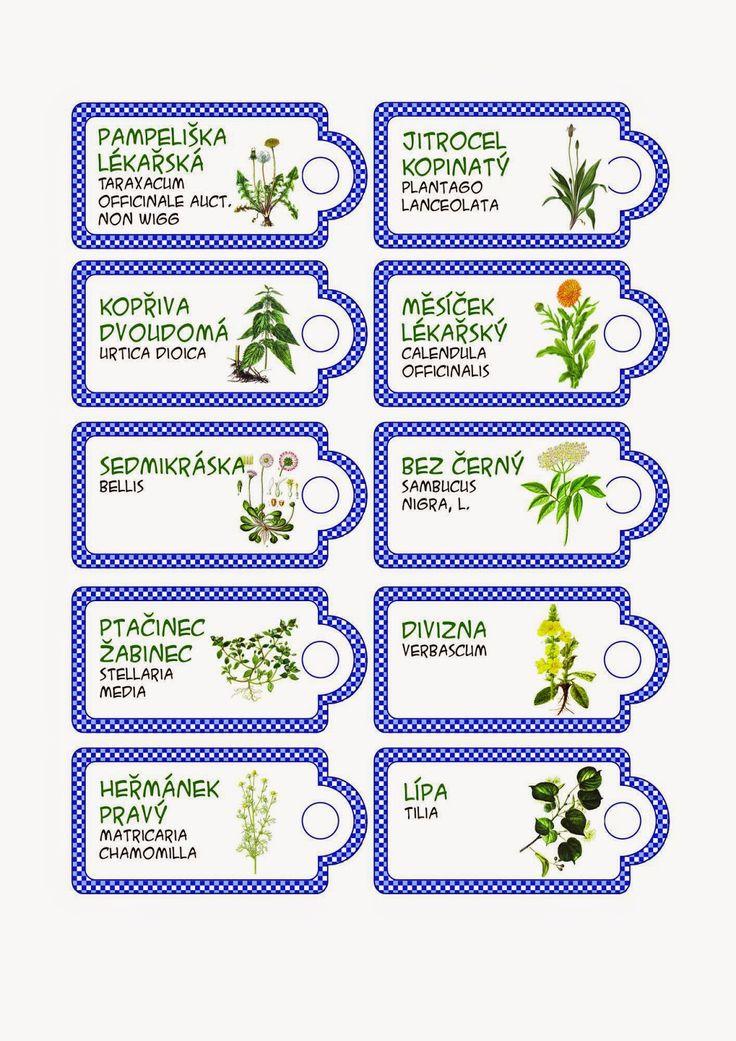 Cedulky-bylinky