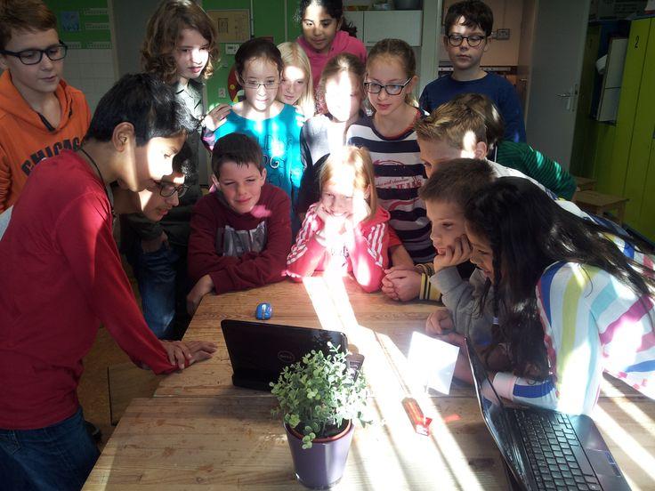 CodeKinderen lessen bij de Floriant in Zoetermeer. Alle groepen allemaal vier lessen. najaar 2013