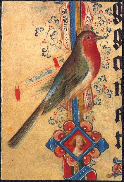 """A red-breasted robin with two labels: the Middle English word for Robin, """"Roddock,"""" and """"Robertus,"""" Latin for Robert--Robin could be a nickname for Robert. This could be a private joke for the owner of the manuscript, Robert Brunyng, the abbot of the Benedictine monastery in Sherborne in England. This fantastic robin can be found in the margins of the Sherborne Missal created in England in the early 15th century. London, The British Library, Ms. Add. 74236, fol. 382."""
