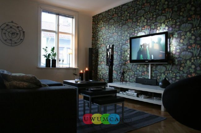 Living Room:Decorating Brazilian Living Room And Lighting With Sofa Furniture Coffee Table Chairs Rug Design For Small Spaces Ideas TV Wall Units 36 In White Color Luxury Living Room Decor of an Art Collector by Gisele Taranto