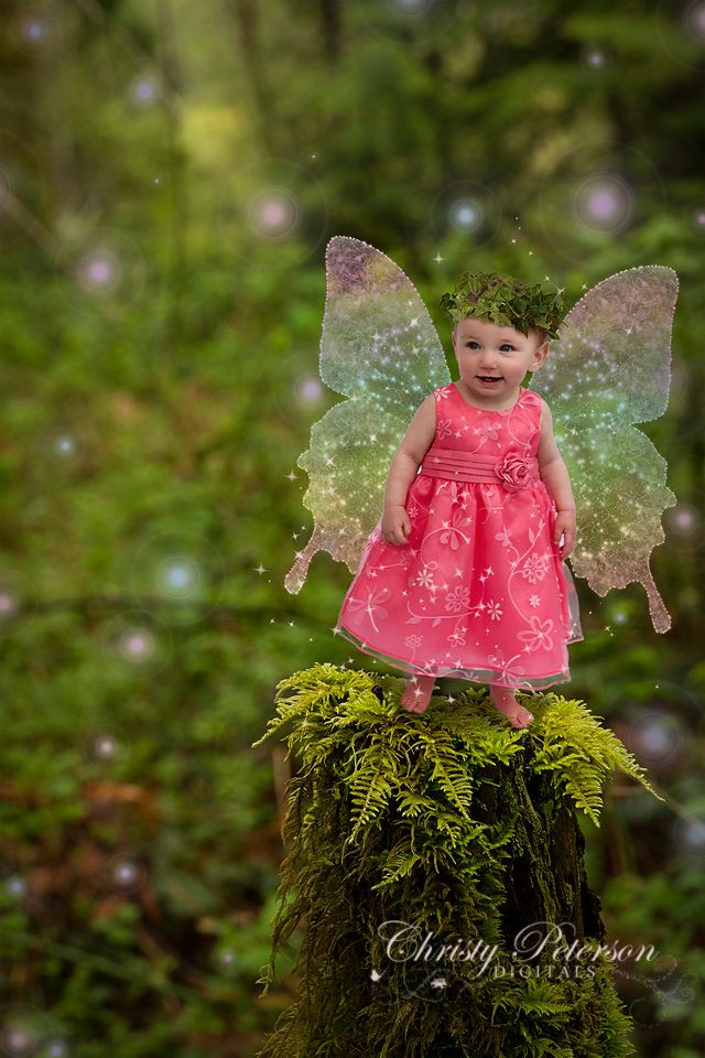 photoshop-fairy-wing-brush-and-overlays-and-digital-backgrounds-for-photographers-of-mossy-stump.jpg (640×960)