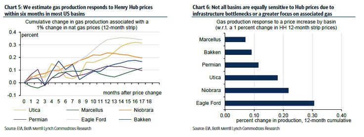 Natural gas price change in response to Henry Hub prices