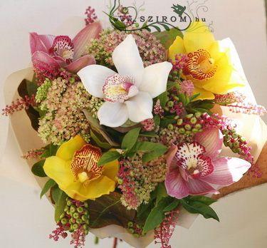 5 színes orchidea