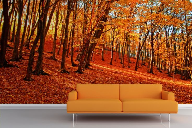 Autumn forest wallpaper murals fall favorites for Autumn forest wall mural