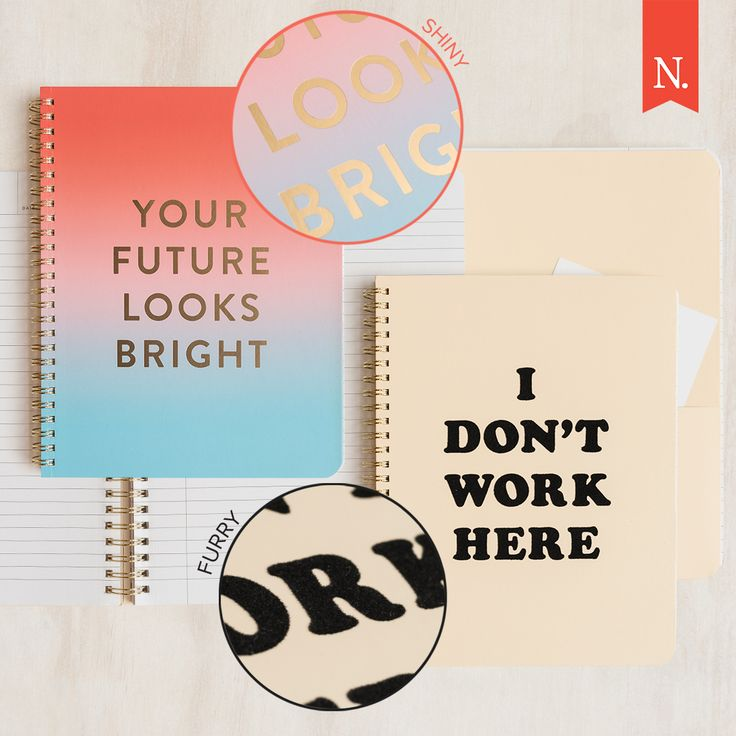 Fun, cheeky and quirky ban.do notebooks!