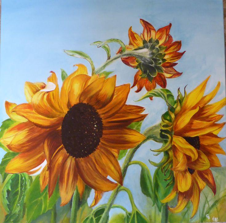 Penpont Sunflowers; oil on canvas by Gorica Bulcock