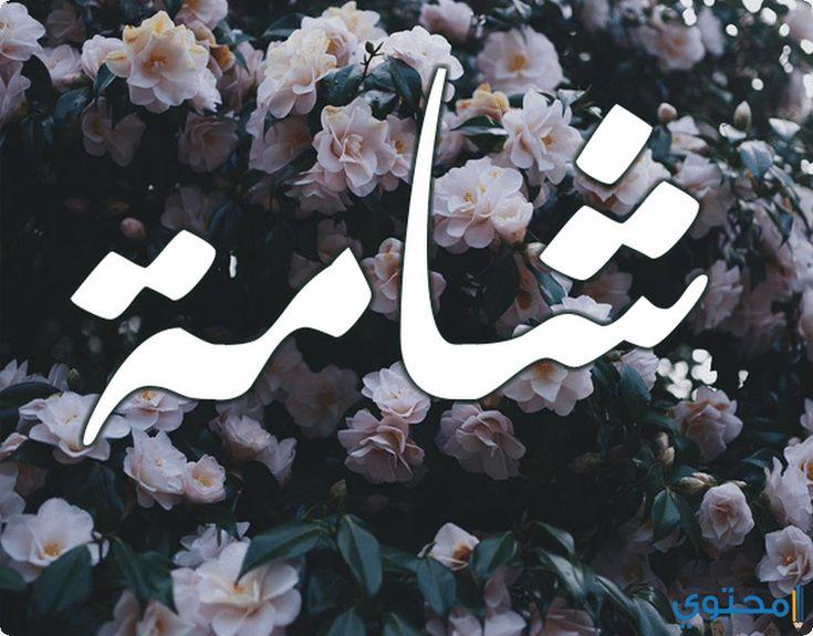 معنى اسم شامة وصفاتها الشخصيه Shama معاني الاسماء Shama اسم شامة Nike Logo Art