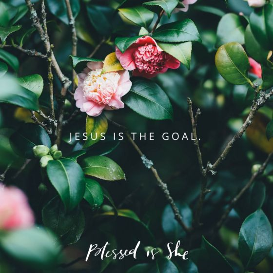 Rules and teachings help us stay on the path to the ultimate goal, Jesus. How can you use your knowledge to know Him better? - Blessed Is She   Christian Devotions for Women   Catholic Faith