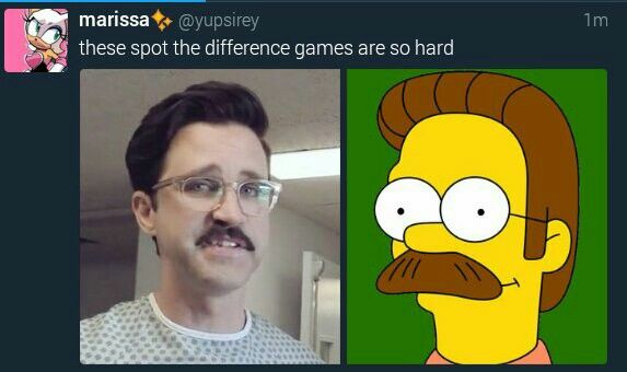 Link Neal from Good Mythical Morning is Ned Flanders
