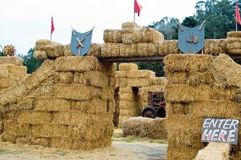 Not for hayfever sufferers this hay maze