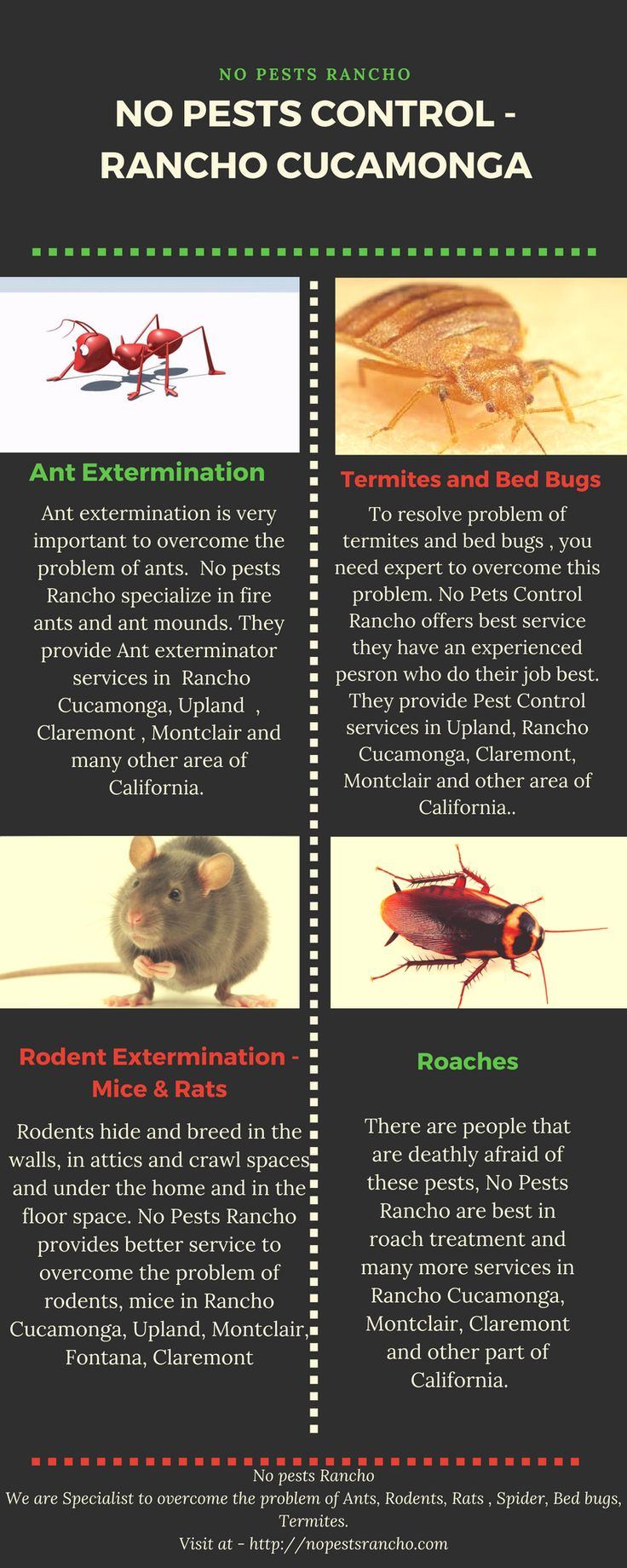 Get control of termites, ants and rat problem, No Pets Rancho provides you world best control  services, they have an expert for pest control at an affordable cost in the area of California. They also Provide their services for Ant Exterminator, rodents, mice, bees and wasps in both residential and commercial areas. http://nopestsrancho.com/