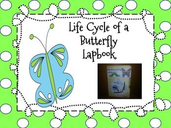 butterfly lapbook fun project for the life cycle of a
