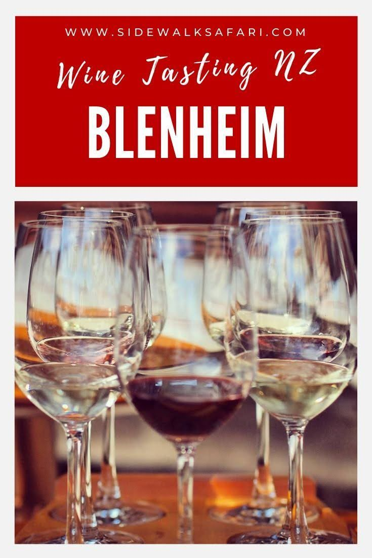 How To Cycle Blenheim Wineries In New Zealand In 2020 New Zealand Marlborough New Zealand New Zealand Wine