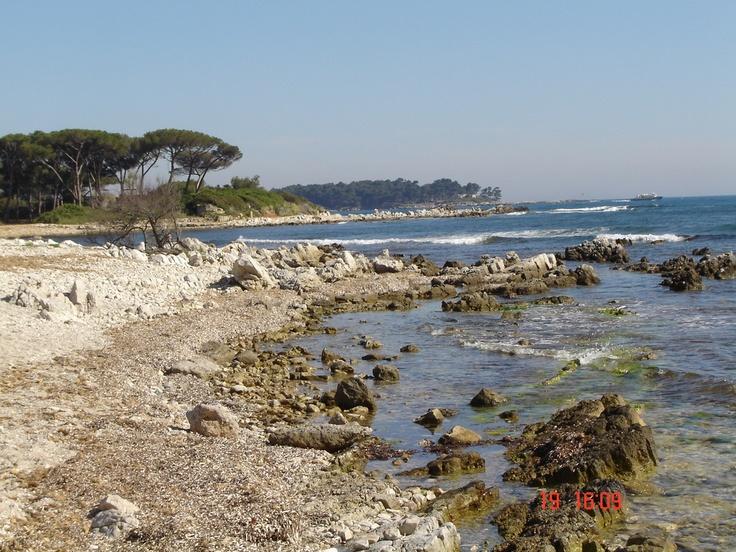 Taken on Île Sainte-Marguerite (St. Margaret's Island), Cote D'Azur, France.