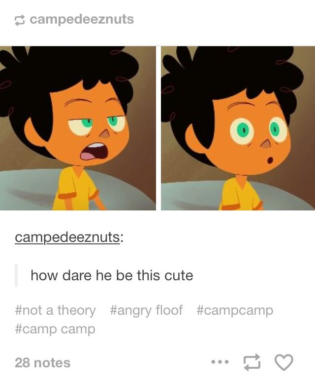 wHAT THE FUCK IS CAMP CAMP