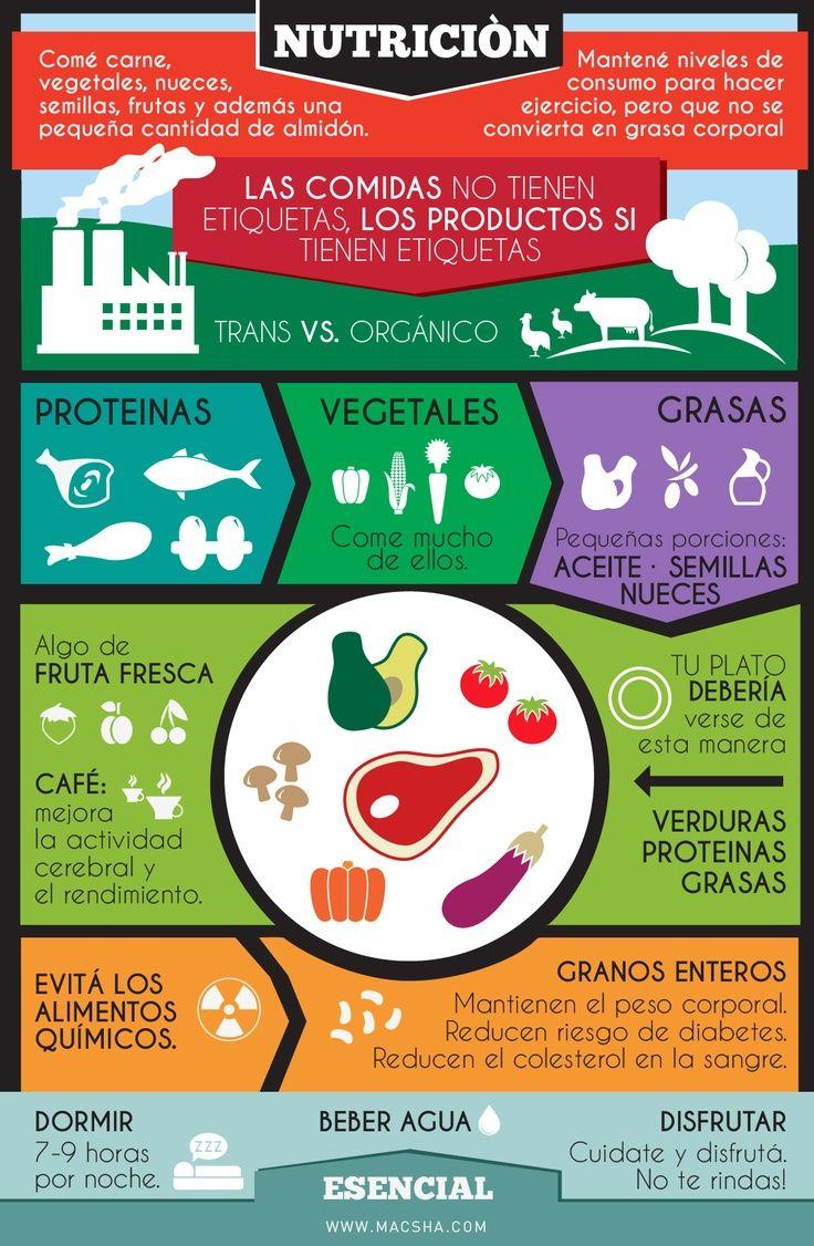 Resultado de imagen para nutricion infografia