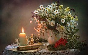 Обои рябина, букет, ноты, свеча, натюрморт, ромашки