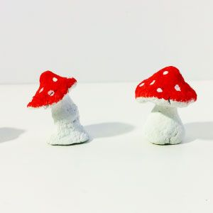 Ik laat je in een filmpje zien hoe je leuke paddenstoeltjes kan knutselen van zelfgemaakte papier-maché lijm.