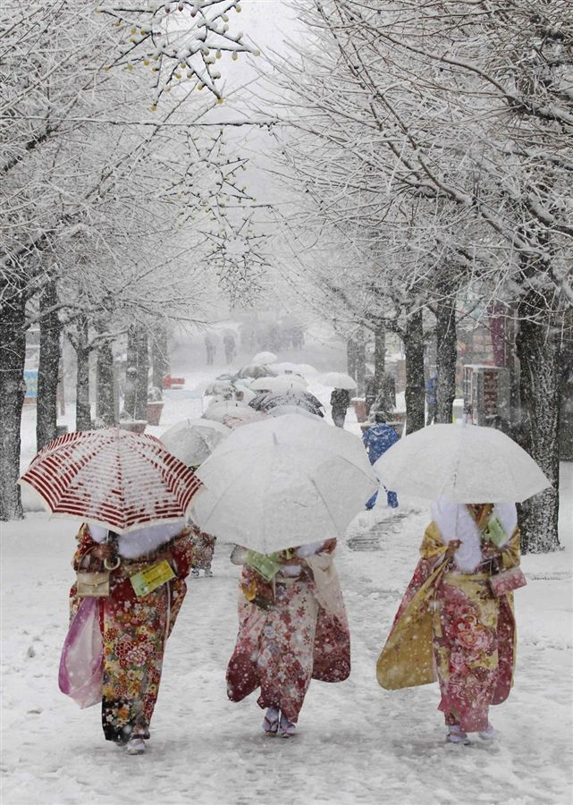 Japanese women in kimonos walk during heavy snowfall at Toshimaen amusement park in Tokyo, as they attend a ceremony celebrating Coming of Age Day.