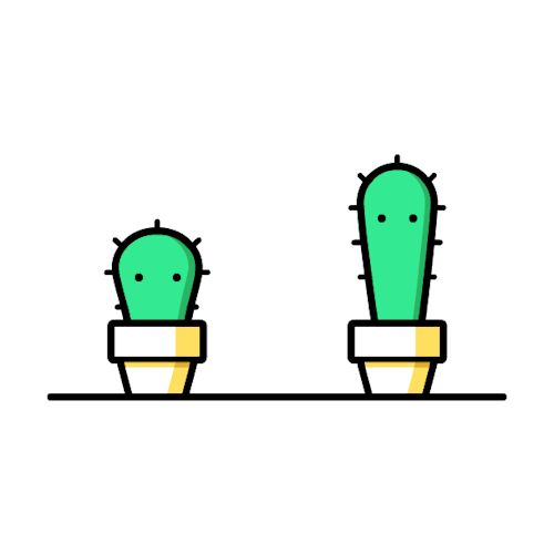 Cacti by Gal Shir