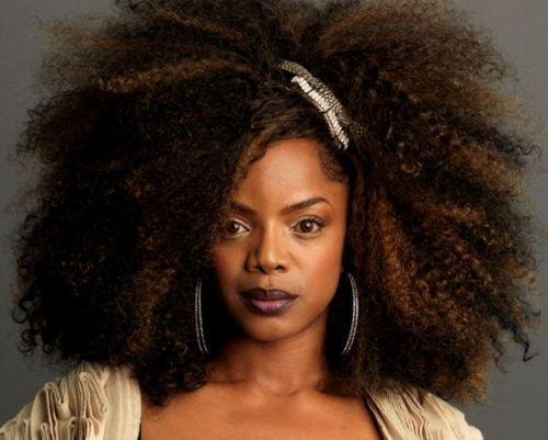 29 Best Leela James Images On Pinterest Natural Hair