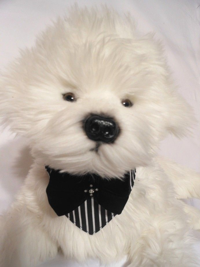 RUDI  $24.95 Another easy tie on bandana with black velvet ribbons in the traditional bandana cut.