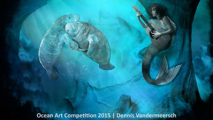 3rd place, pool/conceptual category, 'The Dancing Manatees' #piclectica