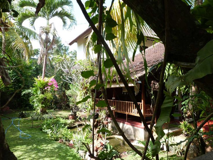 Rumah Suwandi for rent. Ubud Bali. 245 euro a week. ( 35 euro a night ) House with two bedrooms. 1 month 30 euro a night. ask emilesvv@hotmail.com  http://www.bungalow-villa.com/suwandi-nederlands.htm