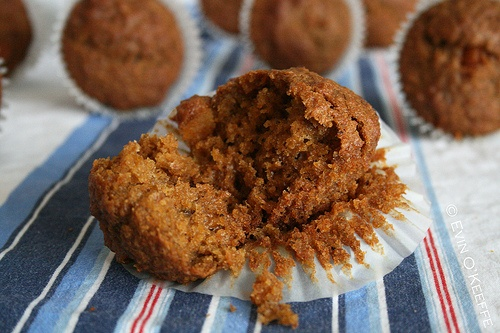 Cranberry Carrot Muffin recipe. Healthy snack alternative and easy to make. Great use for carrot pulp leftover from juicer machine too. Lots of good recipes, gift ideas, craft projects, and articles on EvinOK.net @Evi N. O'Keeffe