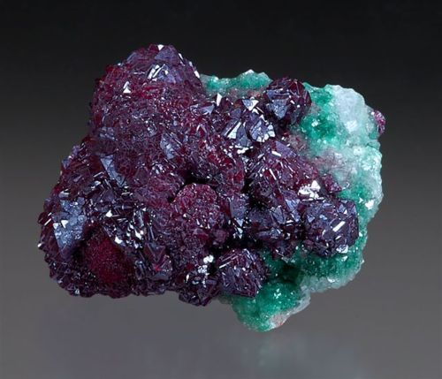 gem-myriad:  Cuprite  Cuprite Deep wine red. (High copper content) Opens flow of Root and  Spleen Chakras, Kundalini energy, will power. Als...
