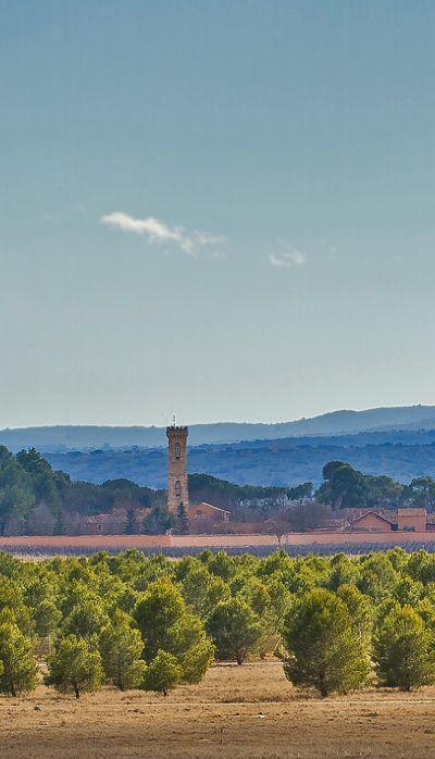 Dehesa de Los Llanos, Albacete, Spain