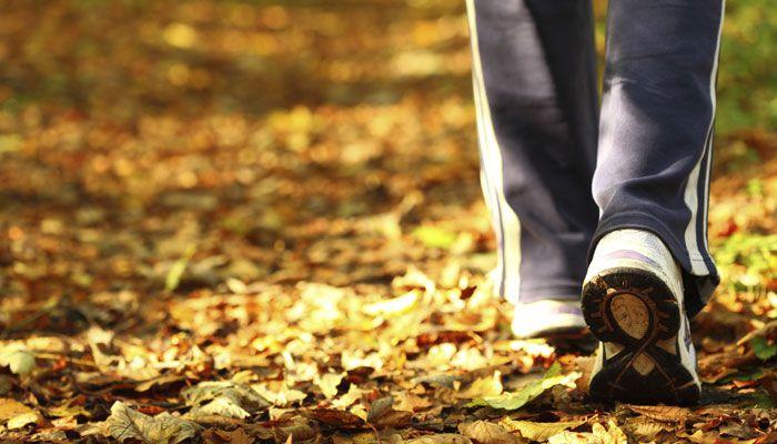Brisk walking may help older women curb heart failure risk: Study