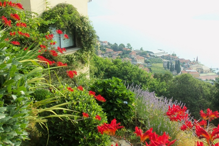 Lake Como Accommodation Panorama Apartment.     View of the lake, scent of flowers