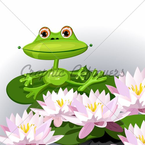 18 best images about Frogs on Pinterest | New start ...
