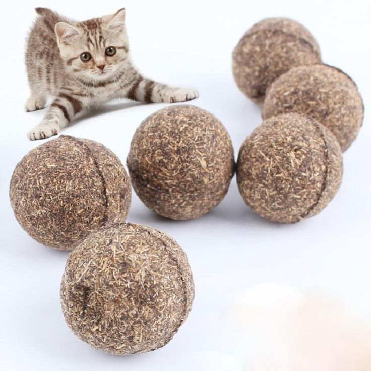 New Cat Natural Catnip Ball Menthol Flavor cats gatos supplies cats katten speelgoed gatto brinquedos catnip kedi malzemeleri