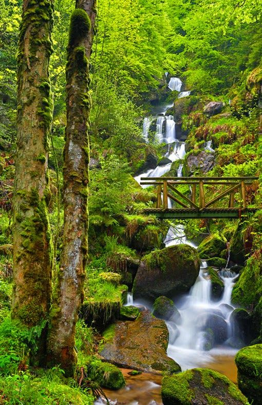 Black Forest Waterfall ~ Gutach River ~ Triberg ~ Baden-Wurttemberg ~ Schwarzwald ~ Germany