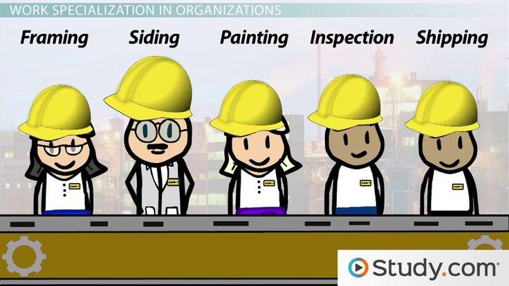 Work Specialization in Organizations - Video