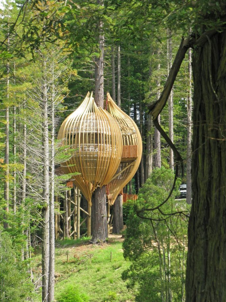 Intriguing Yellow Treehouse Restaurant in Auckland - wave avenue