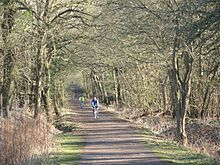 Wimbledon Common - Wikipedia, the free encyclopedia