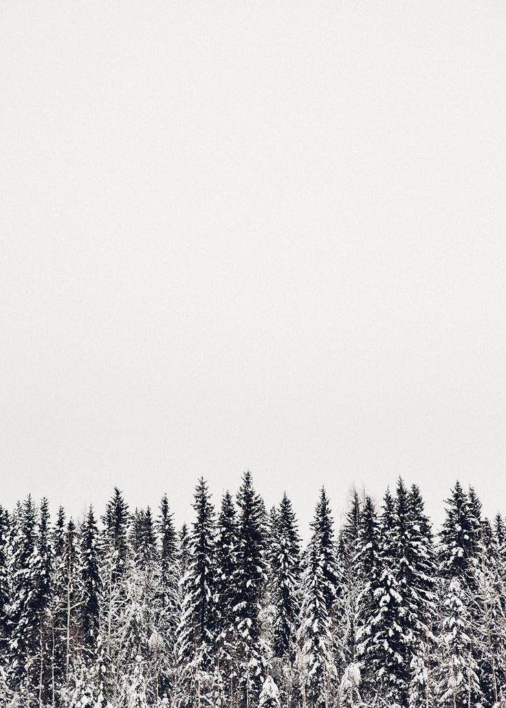 Best 25 iphone wallpaper christmas ideas on pinterest - Pine tree wallpaper iphone ...
